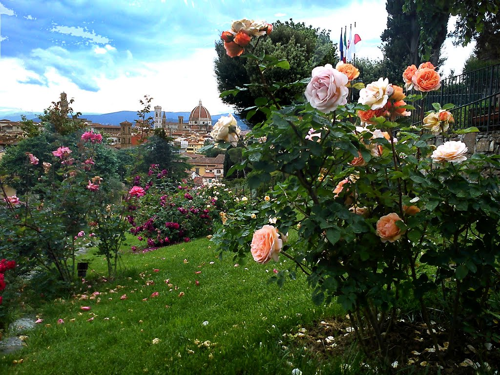 Rose Garden Palace Hotel Rome Italy All About Rose Flower 2017